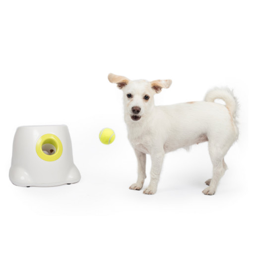 All For Paws Hyper Fetch Mini