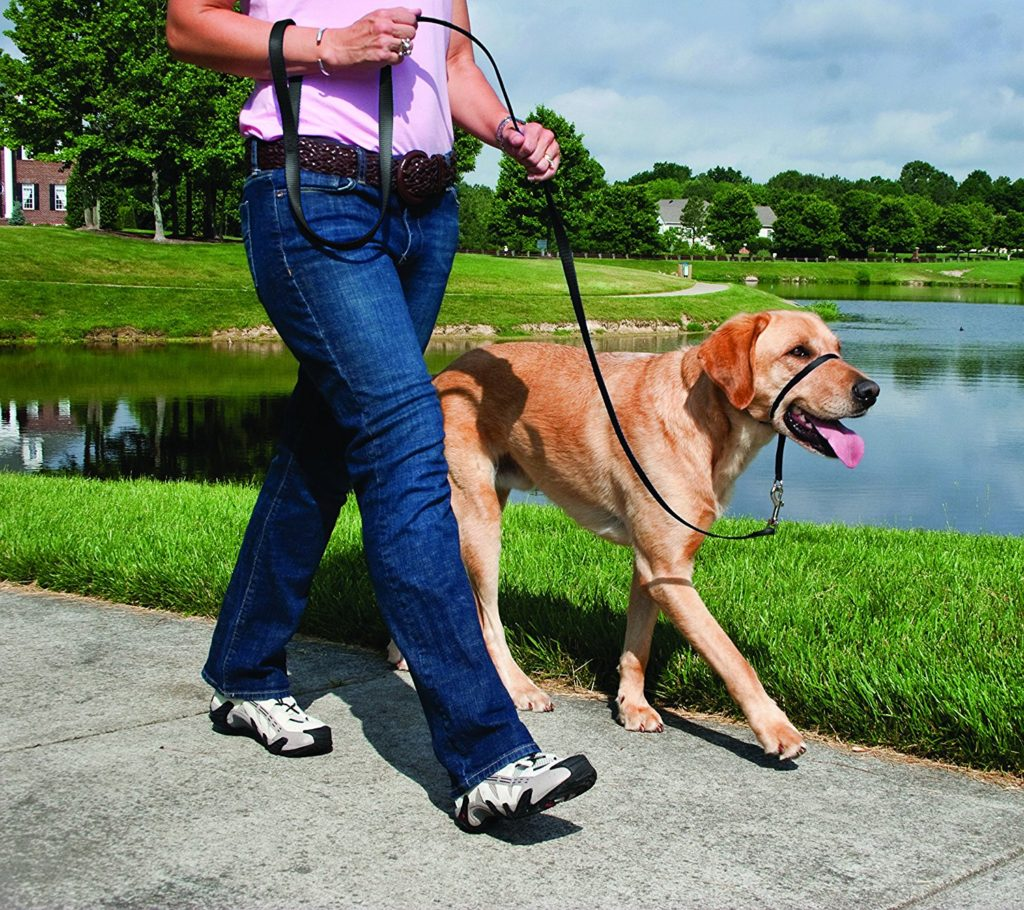 PetSafe Easy Walk Nosgrimma